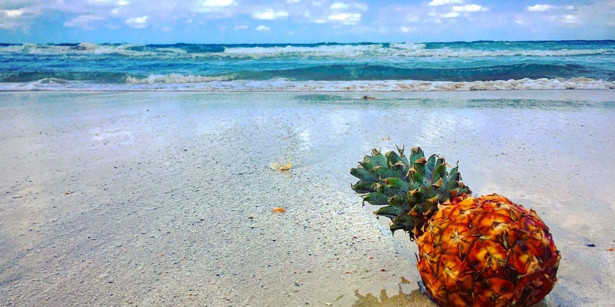 Pina en la Playa